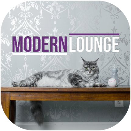 Coverbild Modern Lounge